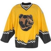 Why the an original six team would use a different logo I will never know
